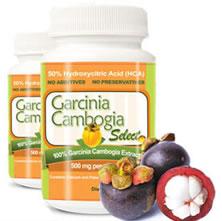 Garcinia dietary supplement product insurance florida