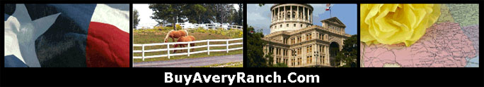 Avery Ranch Golf Course Community